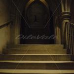 Washington National Cathedral - DileVale
