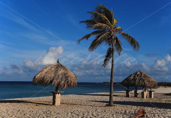 Arashi Beach – Aruba - DileVale