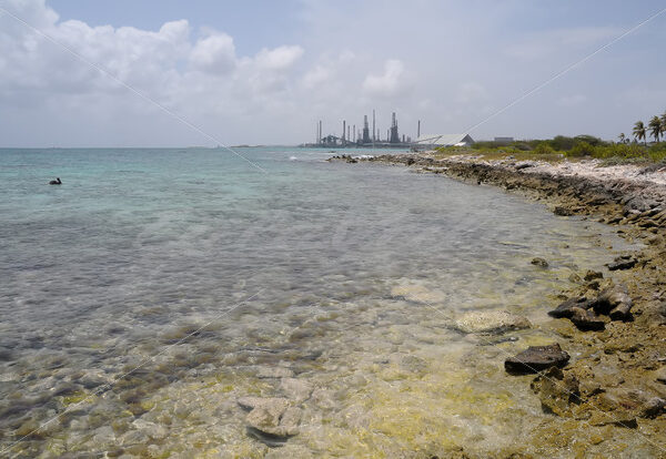 Baby Beach – Aruba - DileVale