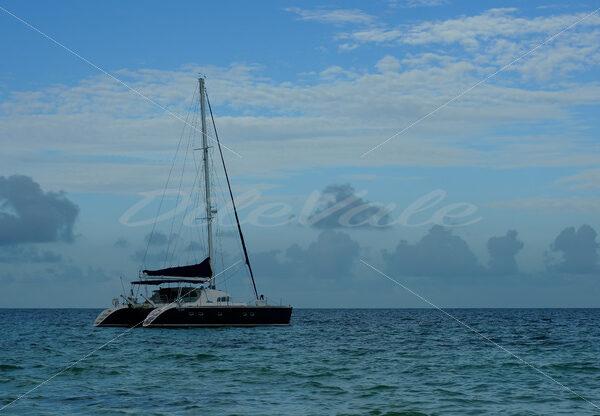 Boat- Cancun - DileVale