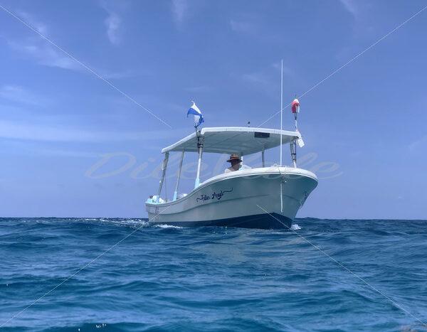 Boat- Riviera Maya – Mexico - DileVale