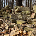 Bricks in the Wood - DileVale