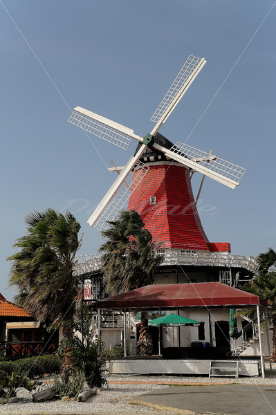 Old Mill – Aruba - DileVale