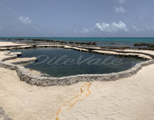 Pool – Riviera Maya – Mexico - DileVale