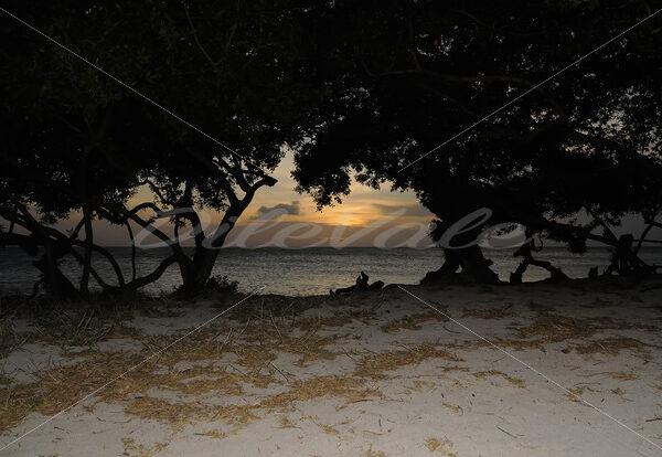 Sunset – Boca Catalina Beach – Aruba - DileVale