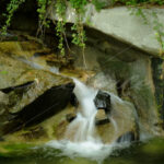 Waterfall – Washington Zoo - DileVale
