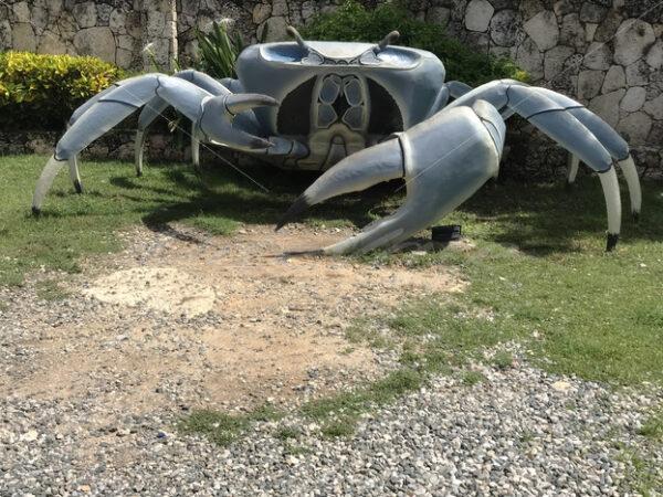 Crab Artifact – Punta Cana - DileVale