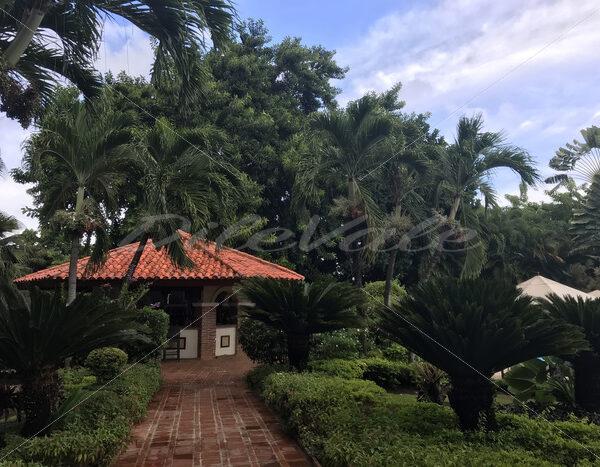 Santo Domingo - DileVale